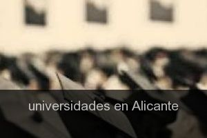 Universidades en Alicante